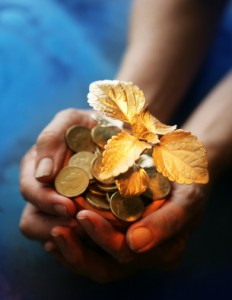 Hands with Leaves - Lead into Gold - money coaching